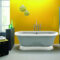 Bathtubs With Color